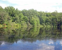 Cranberry Lake in White Plains
