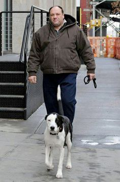 """""""We are very saddened to hear of the sudden passing of James Gandolfini, pictured here with his rescue Duke. A great actor and wonderful advocate for an often misunderstood breed. His final film will be Fox Searchlight's crime drama """"Animal Rescue"""" which includes a pit bull as a focal point in the story. Much beloved by those who worked with him and known to be a kind and gentle soul, we applaud his efforts to provide a voice for the voiceless and our prayers are with his wife and children, h..."""