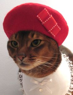 Red Beret with grosgrain ribbon bow by CatAtelier on Etsy, via Etsy.