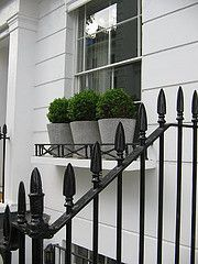 window boxes with boxwoods