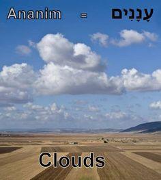 Hebrew word clouds/ananim.