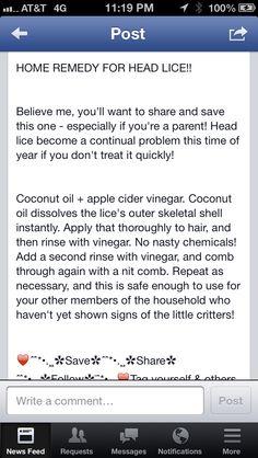 Natural head lice treatment