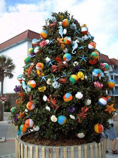 beachi christma, island christma, christma tree, tybe island, christmas trees, tybee island, coastal christmas