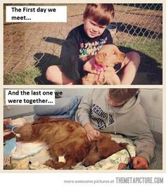 I cried...