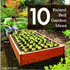 10 raised bed garden ideas by sscott