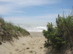 Nantucket beach path