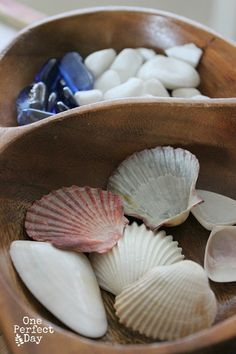 Loose Natural Parts for Exploring An Everyday Story 1 Sand Tray and Loose Parts