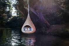 water droplet chair dream, reading spot, bird nests, lake, hanging chairs, backyard, hammock, swing, place