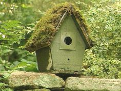 Cottage birdhouse with a mossy roof!