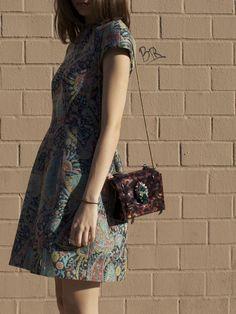 Vladimir Bag & Carven Dress