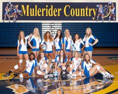 2013 SAU Volleyball Team....Photo courtesy of Grisham Photography