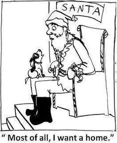 Adopt, don't shop!!