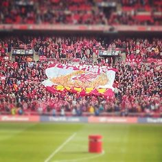 Think this is a great photo by @kopite4life of #LFC supporters at the Cup Final