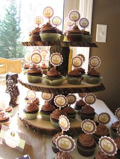 Cupcake Stand and awesome owl babyshower ideas