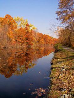 Fall In Windsor Locks, CT.