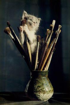 artist meow