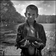 Карась - Crucian by Oleg Videnin