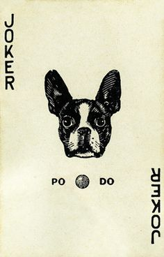 Peau Doux joker playing card, Made in Walgreen Chicago. 1920s. the joker, play card, boston terrier vintage, joker play, dog cards, vintage playing cards