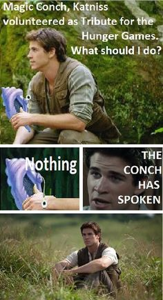 Haha...If you've seen The Hunger Games, you will understand.