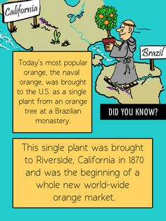 Fun Food Facts! Did you know the popular naval orange started in the U.S. as a single tree from a Brazilian monastery?