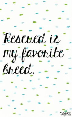 There's no greater gift than rescuing a pet in need. Rescue your new best friend today!  #purinabeyond #comissioned Downloadable background via @designlovefest