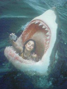 Selfies #destinationsummer #sharks