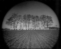 Tokihiro Sato Photo-Respiration # 63 1990