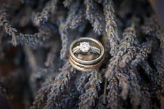 Johnstone Studios - thunderbird lodge wedding - wedding rings and lavender