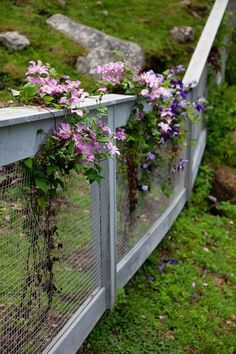 Fence ideas on pinterest fencing front yards and picket for Pretty fencing ideas