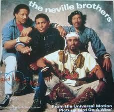 bird on a wire the neville brothers