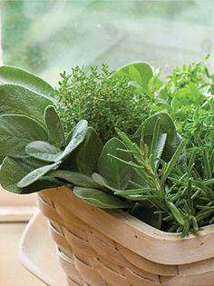 herbs fresh from your garden!