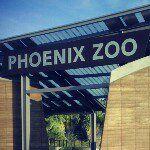 Phoenix Zoo on Instagram