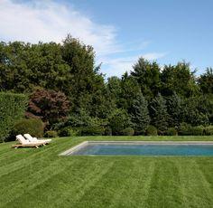 lawn/pool