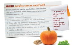 Pumpkin Rescue Meatballs recipe from veterinarian Dr. Ernie Ward - fun for fall and healthy for pets, too!