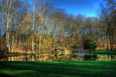 JMU ARBORETUM yeahh.  We will all be yearning for green grass again soon when we are in the dark months of winter.
