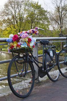 Amsterdam biking amsterdam bike, bicicleta paseo