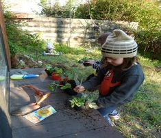 Creating a Family Friendly Garden   backyard-tips.com