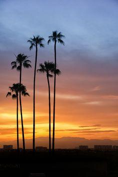 The Sunset Five Los Angeles, CA#PinToWIn #NPSet #California #NapoleonPerdis