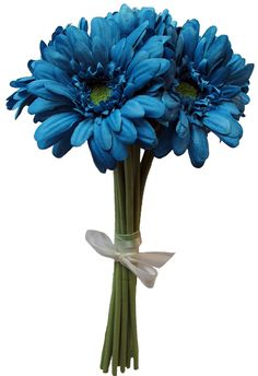 Silk Gerbera Daisy in Dark Turquoise for your bouquet with red and white as well and ours just red and white bc our dresses are turquoise
