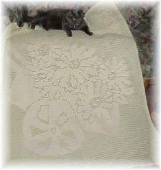 Daisies Filet Afghan Free Crochet Pattern