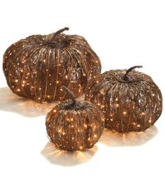 Enchant your harvest decor with the handcrafted appeal of our Pre-lit Grapevine Halloween Pumpkins