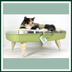 Atomic Atic has upcycled an old suitcase into a cat bed. This has to be the coolest cat accessory ever!