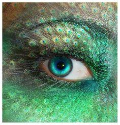 """Peacock"" Eye"