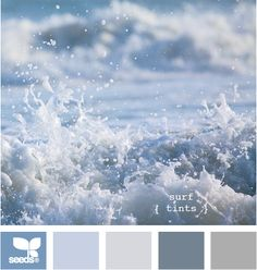 surf tints design seeds hues tones shades  color palette, color inspiration cards #hues #tones #shades #colorpalette #colorinspiration #designseeds