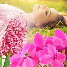 Tranquil Sleep Fragrance Oil  #fragrance #fragranceoil #fragranceoils  #wholesale #naturesgarden