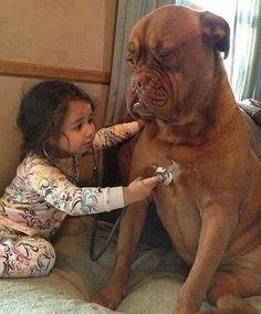 Veterinaria en potencia ;) #perros #dogs #mascotas #niños #amistad #gracioso #funny
