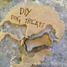 DIY Cheesy Cheddar Dog Treats