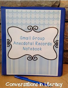 Great way to manage and organize small group anecdotal records!  Need this notebook!