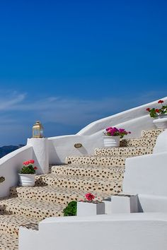 Flower steps, Oia, Santorini  some places are just THAT beautiful.