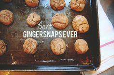 Gingersnap recipe